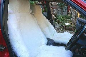 運転席用carseat01の画像