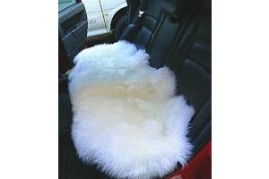 運転席用carseat03の画像