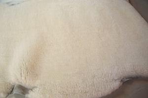 ホワイト系短毛ムートンの画像